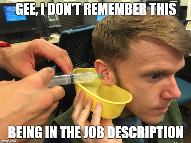 Your Job | GEE, I DON'T REMEMBER THIS BEING IN THE JOB DESCRIPTION | image tagged in job description,ears,office | made w/ Imgflip meme maker