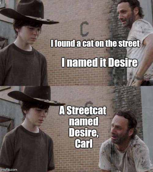 Stella! | I found a cat on the street I named it Desire A Streetcat named Desire, Carl | image tagged in memes,rick and carl,streetcar,desire,a streetcar named desire,pun | made w/ Imgflip meme maker