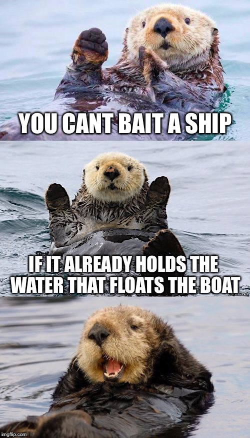 Bad pun otter | YOU CANT BAIT A SHIP IF IT ALREADY HOLDS THE WATER THAT FLOATS THE BOAT | image tagged in bad pun otter,memes,funny,cute animals,puppy love | made w/ Imgflip meme maker