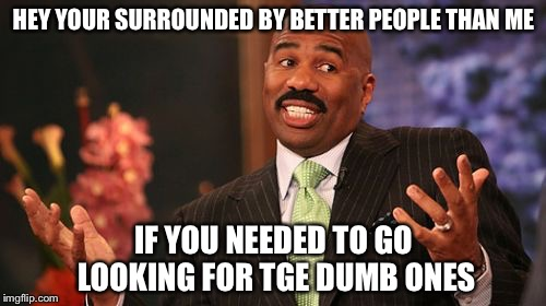 Steve Harvey Meme | HEY YOUR SURROUNDED BY BETTER PEOPLE THAN ME IF YOU NEEDED TO GO LOOKING FOR TGE DUMB ONES | image tagged in memes,steve harvey | made w/ Imgflip meme maker