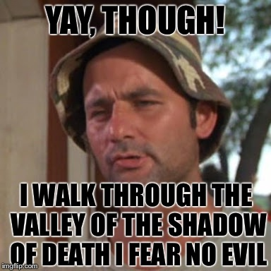 YAY, THOUGH! I WALK THROUGH THE VALLEY OF THE SHADOW OF DEATH I FEAR NO EVIL | image tagged in which is nice | made w/ Imgflip meme maker
