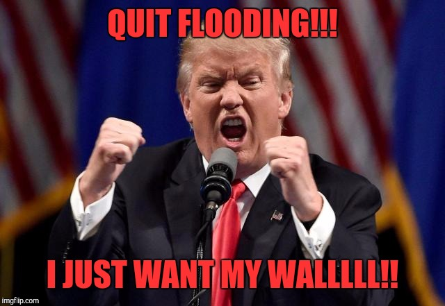 QUIT FLOODING!!! I JUST WANT MY WALLLLL!! | made w/ Imgflip meme maker