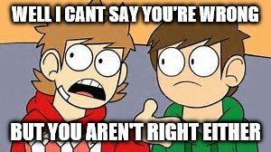 Eddsworld | WELL I CANT SAY YOU'RE WRONG BUT YOU AREN'T RIGHT EITHER | image tagged in eddsworld | made w/ Imgflip meme maker