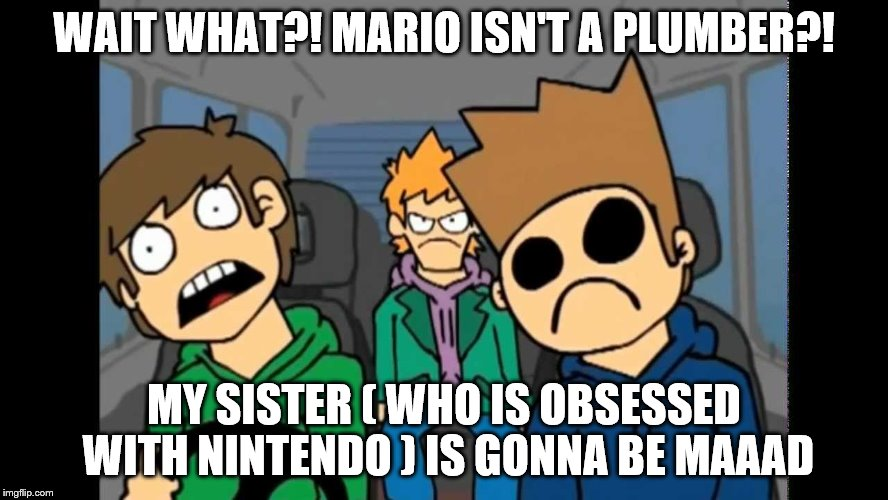 WAIT WHAT?! MARIO ISN'T A PLUMBER?! MY SISTER ( WHO IS OBSESSED WITH NINTENDO ) IS GONNA BE MAAAD | made w/ Imgflip meme maker