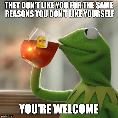 But Thats None Of My Business Meme | THEY DON'T LIKE YOU FOR THE SAME REASONS YOU DON'T LIKE YOURSELF YOU'RE WELCOME | image tagged in memes,but thats none of my business,kermit the frog | made w/ Imgflip meme maker