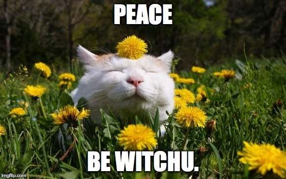 PEACE BE WITCHU. | made w/ Imgflip meme maker