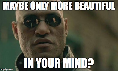 Matrix Morpheus Meme | MAYBE ONLY MORE BEAUTIFUL IN YOUR MIND? | image tagged in memes,matrix morpheus | made w/ Imgflip meme maker