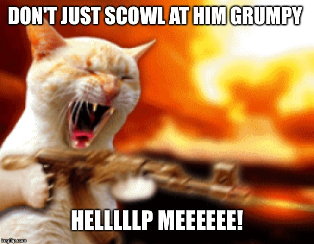 DON'T JUST SCOWL AT HIM GRUMPY HELLLLLP MEEEEEE! | made w/ Imgflip meme maker