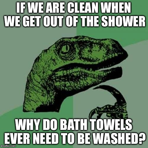 Philosoraptor Meme | IF WE ARE CLEAN WHEN WE GET OUT OF THE SHOWER WHY DO BATH TOWELS EVER NEED TO BE WASHED? | image tagged in memes,philosoraptor | made w/ Imgflip meme maker