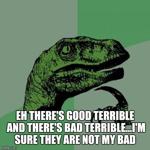 Philosoraptor Meme | EH THERE'S GOOD TERRIBLE AND THERE'S BAD TERRIBLE...I'M SURE THEY ARE NOT MY BAD | image tagged in memes,philosoraptor | made w/ Imgflip meme maker