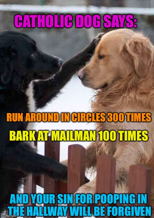dogs | CATHOLIC DOG SAYS: BARK AT MAILMAN 100 TIMES RUN AROUND IN CIRCLES 300 TIMES AND YOUR SIN FOR POOPING IN THE HALLWAY WILL BE FORGIVEN | image tagged in dogs | made w/ Imgflip meme maker