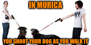IN MURICA YOU SHOOT YOUR DOG AS YOU WALK IT | made w/ Imgflip meme maker