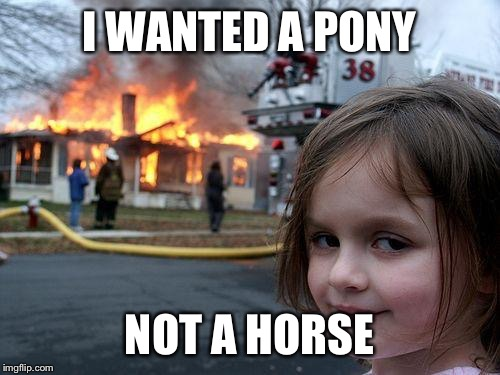 Disaster Girl Meme | I WANTED A PONY NOT A HORSE | image tagged in memes,disaster girl | made w/ Imgflip meme maker