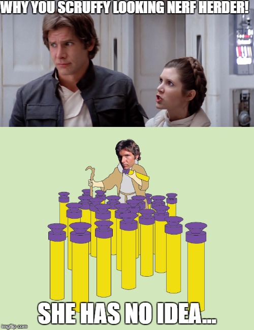 Nerf Herding. It's a Real Job | WHY YOU SCRUFFY LOOKING NERF HERDER! SHE HAS NO IDEA... | image tagged in han solo,princess leia,nerf,nerf herder | made w/ Imgflip meme maker