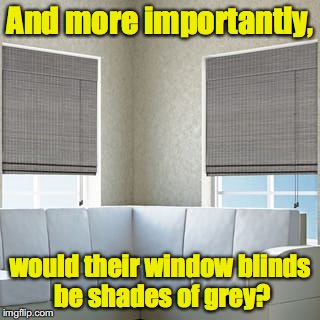 And more importantly, would their window blinds be shades of grey? | made w/ Imgflip meme maker