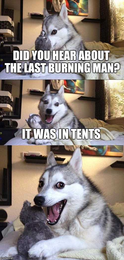 Bad Pun Dog Meme | DID YOU HEAR ABOUT THE LAST BURNING MAN? IT WAS IN TENTS | image tagged in memes,bad pun dog | made w/ Imgflip meme maker