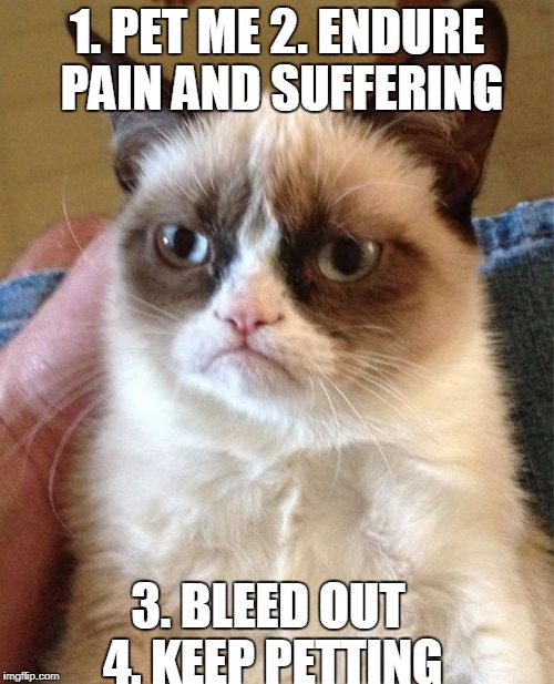 How to Pet Grumpy Cat | 1. PET ME 2. ENDURE PAIN AND SUFFERING 3. BLEED OUT 4. KEEP PETTING | image tagged in memes,grumpy cat | made w/ Imgflip meme maker
