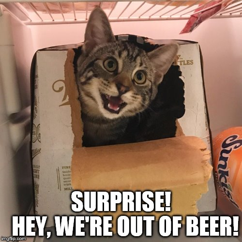 SURPRISE!       HEY, WE'RE OUT OF BEER! | image tagged in beer | made w/ Imgflip meme maker