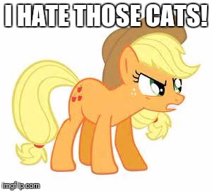 Mad AJ | I HATE THOSE CATS! | image tagged in mad aj | made w/ Imgflip meme maker
