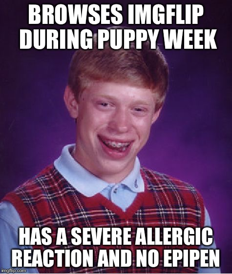 Bad Luck Brian Meme | BROWSES IMGFLIP DURING PUPPY WEEK HAS A SEVERE ALLERGIC REACTION AND NO EPIPEN | image tagged in memes,bad luck brian | made w/ Imgflip meme maker