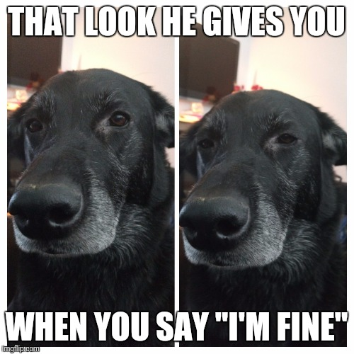 "I'm fine | THAT LOOK HE GIVES YOU WHEN YOU SAY ""I'M FINE"" 