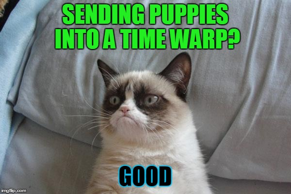 SENDING PUPPIES INTO A TIME WARP? GOOD | made w/ Imgflip meme maker