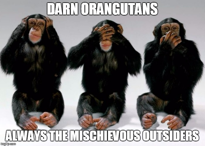 DARN ORANGUTANS ALWAYS THE MISCHIEVOUS OUTSIDERS | made w/ Imgflip meme maker