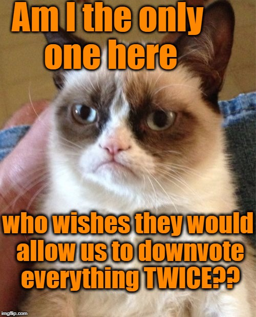 Grumpy Cat Meme | Am I the only one here who wishes they would allow us to downvote everything TWICE?? | image tagged in memes,grumpy cat | made w/ Imgflip meme maker