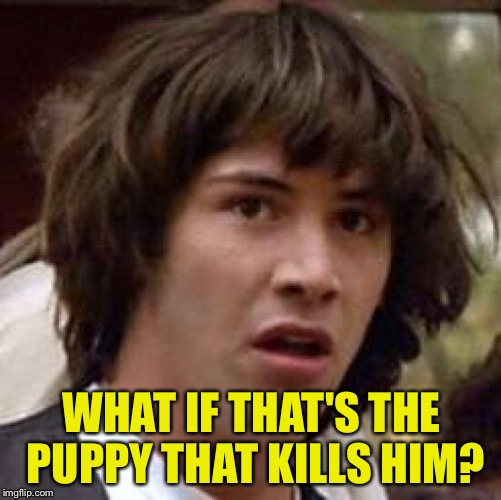 Conspiracy Keanu Meme | WHAT IF THAT'S THE PUPPY THAT KILLS HIM? | image tagged in memes,conspiracy keanu | made w/ Imgflip meme maker
