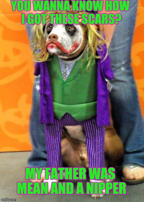 I gave you the meme Imgflip needed not the one it deserved | YOU WANNA KNOW HOW I GOT THESE SCARS? MY FATHER WAS MEAN AND A NIPPER | image tagged in joker,dogs,clown | made w/ Imgflip meme maker