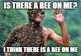 IS THERE A BEE ON ME? I THINK THERE IS A BEE ON ME | image tagged in bee man | made w/ Imgflip meme maker