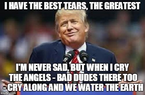 I HAVE THE BEST TEARS, THE GREATEST I'M NEVER SAD, BUT WHEN I CRY THE ANGELS - BAD DUDES THERE TOO - CRY ALONG AND WE WATER THE EARTH | made w/ Imgflip meme maker