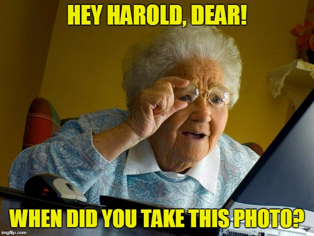 Grandma Finds The Internet Meme | HEY HAROLD, DEAR! WHEN DID YOU TAKE THIS PHOTO? | image tagged in memes,grandma finds the internet | made w/ Imgflip meme maker