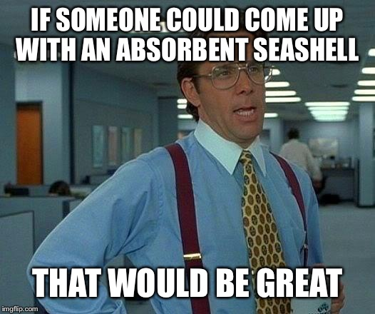 That Would Be Great Meme | IF SOMEONE COULD COME UP WITH AN ABSORBENT SEASHELL THAT WOULD BE GREAT | image tagged in memes,that would be great | made w/ Imgflip meme maker