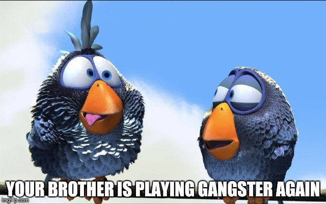 Blue Birds | YOUR BROTHER IS PLAYING GANGSTER AGAIN | image tagged in blue birds | made w/ Imgflip meme maker