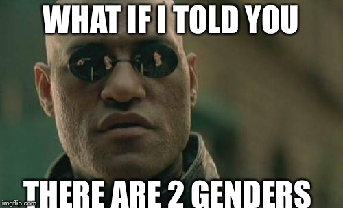 Matrix Morpheus Meme | WHAT IF I TOLD YOU THERE ARE 2 GENDERS | image tagged in memes,matrix morpheus | made w/ Imgflip meme maker
