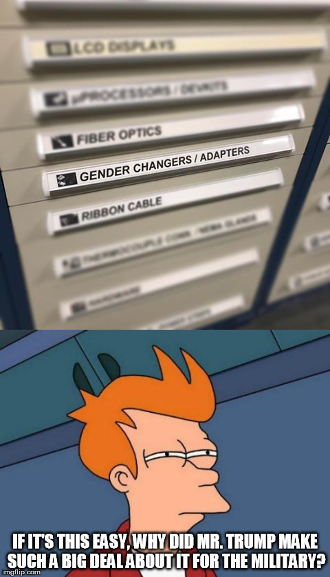 Want to change your gender?  Just use an adapter. | IF IT'S THIS EASY, WHY DID MR. TRUMP MAKE SUCH A BIG DEAL ABOUT IT FOR THE MILITARY? | image tagged in memes,futurama fry,transgender | made w/ Imgflip meme maker