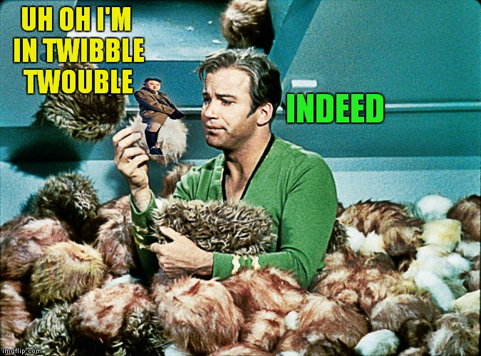 That silly Kim guy... | UH OH I'M IN TWIBBLE TWOUBLE INDEED | image tagged in captain kirk,kim jong un,tribbles | made w/ Imgflip meme maker