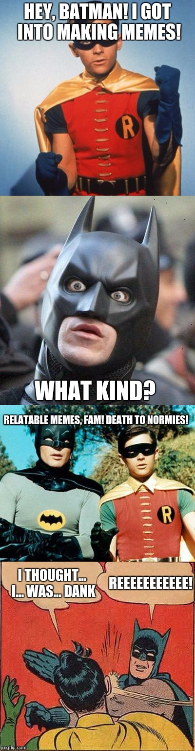 holy dankness, batman! | HEY, BATMAN! I GOT INTO MAKING MEMES! WHAT KIND? RELATABLE MEMES, FAM! DEATH TO NORMIES! REEEEEEEEEEE! I THOUGHT... I... WAS... DANK | image tagged in memes,batman,death to normies,reeeeeeeeeeeeeee,funny | made w/ Imgflip meme maker