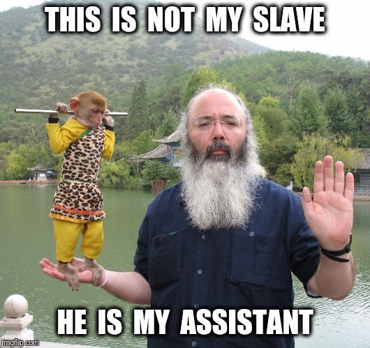 THIS  IS  NOT  MY  SLAVE HE  IS  MY  ASSISTANT | made w/ Imgflip meme maker