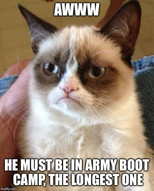 Grumpy Cat Meme | AWWW HE MUST BE IN ARMY BOOT CAMP, THE LONGEST ONE | image tagged in memes,grumpy cat | made w/ Imgflip meme maker