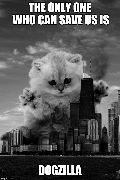 THE ONLY ONE WHO CAN SAVE US IS DOGZILLA | image tagged in apocalypse kitten cat city | made w/ Imgflip meme maker