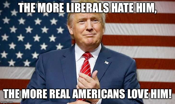 Trump | THE MORE LIBERALS HATE HIM, THE MORE REAL AMERICANS LOVE HIM! | image tagged in donald trump | made w/ Imgflip meme maker