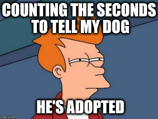 Futurama Fry Meme | COUNTING THE SECONDS TO TELL MY DOG HE'S ADOPTED | image tagged in memes,futurama fry | made w/ Imgflip meme maker