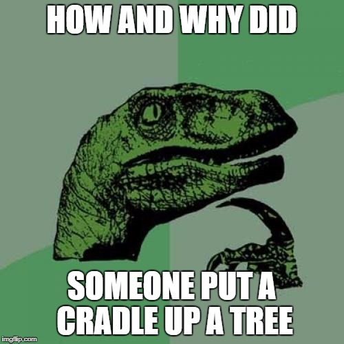 Philosoraptor Meme | HOW AND WHY DID SOMEONE PUT A CRADLE UP A TREE | image tagged in memes,philosoraptor | made w/ Imgflip meme maker