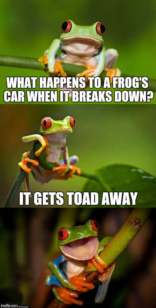 Frog Puns | WHAT HAPPENS TO A FROG'S CAR WHEN IT BREAKS DOWN? IT GETS TOAD AWAY | image tagged in frog puns | made w/ Imgflip meme maker