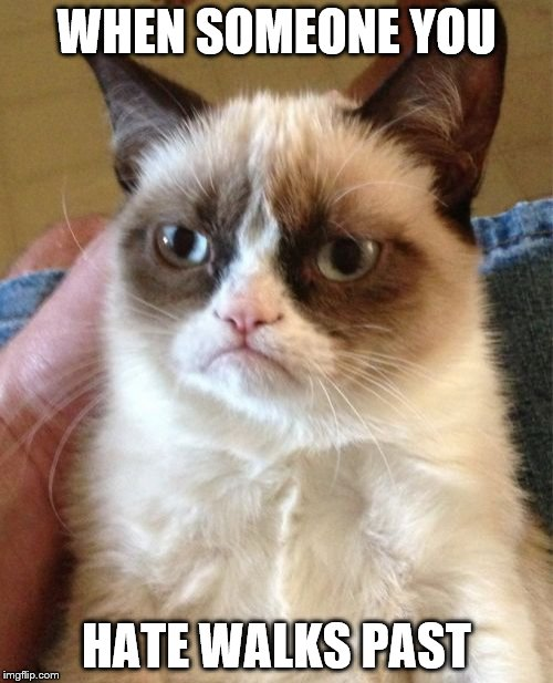 Grumpy Cat Meme | WHEN SOMEONE YOU HATE WALKS PAST | image tagged in memes,grumpy cat | made w/ Imgflip meme maker