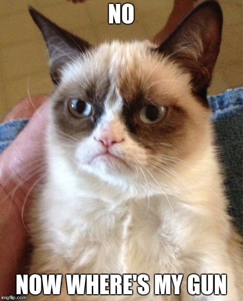 Grumpy Cat Meme | NO NOW WHERE'S MY GUN | image tagged in memes,grumpy cat | made w/ Imgflip meme maker