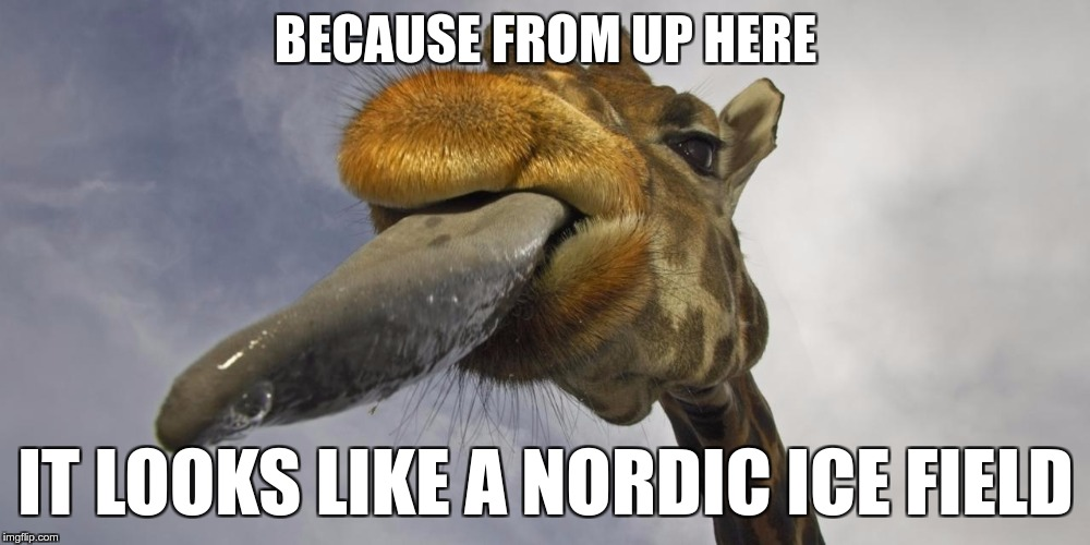 BECAUSE FROM UP HERE IT LOOKS LIKE A NORDIC ICE FIELD | made w/ Imgflip meme maker