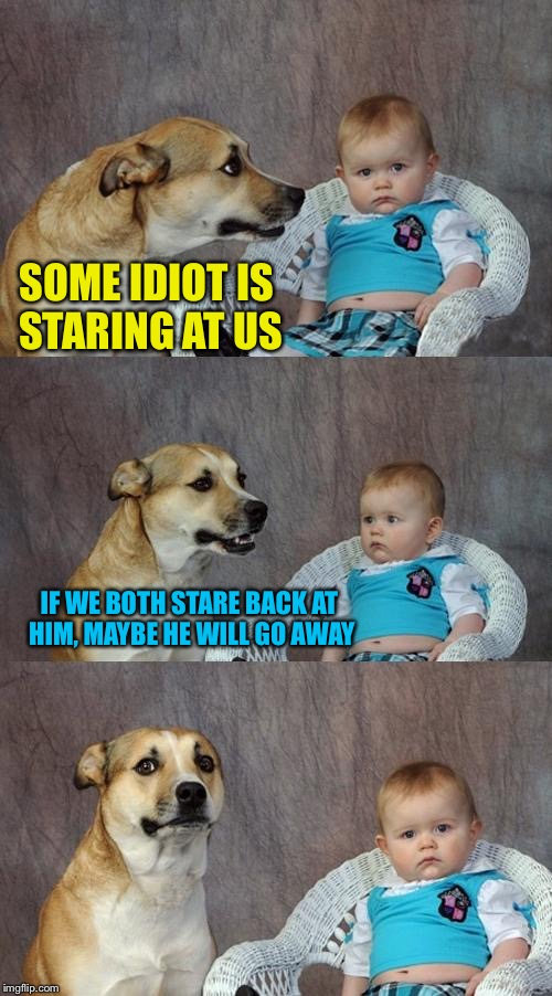 Dad Joke Dog Meme | SOME IDIOT IS STARING AT US IF WE BOTH STARE BACK AT HIM, MAYBE HE WILL GO AWAY | image tagged in memes,dad joke dog | made w/ Imgflip meme maker